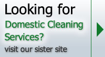 Domestic cleaning services in Ramsgate